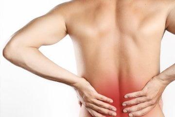Chiropractic Care/Doctor of Chiropractor